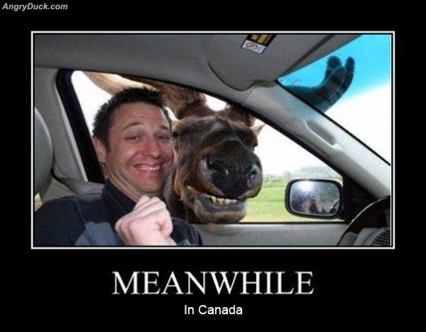 Meanwhile_In_Canadia